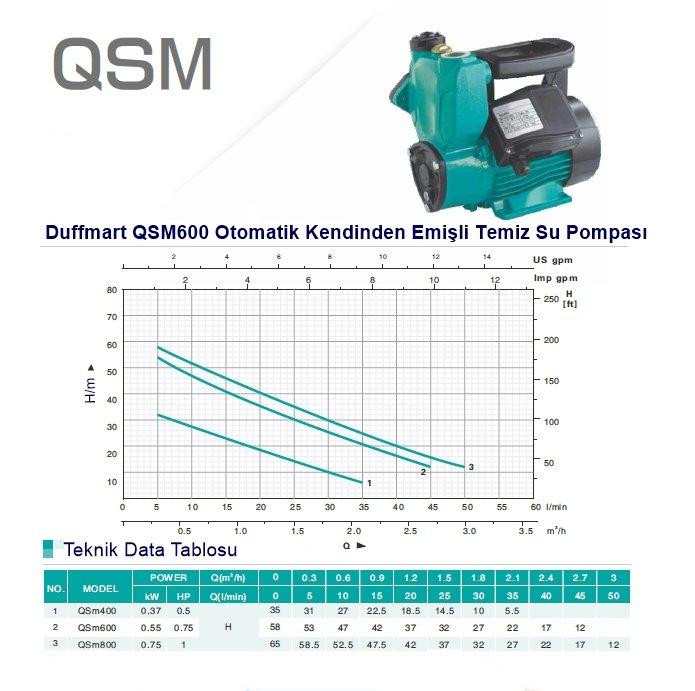 Duffmart QSM600 Otomatik Kendinden Emişli Temiz Su Pompası Teknik Tablosu